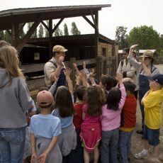 סיור בחווה ההיסטורית בארדנווד