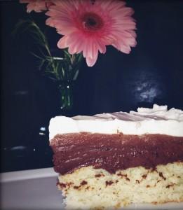 dalit passover cake crop