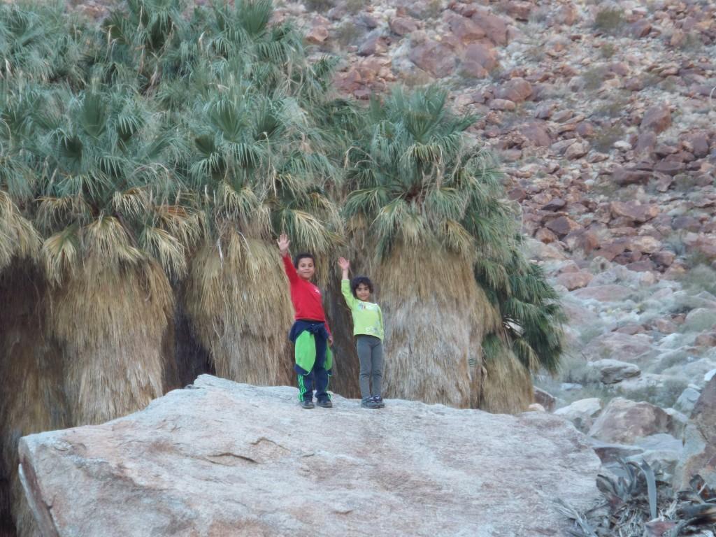 Anza borregos desert state park