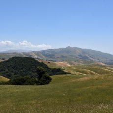 חדש באיסט ביי: פארק Vargas Plateau