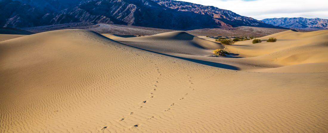 מסלולים ואטרקציות ב-Death Valley (עמק המוות)