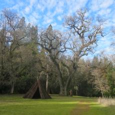 טיול ב-Indian Grinding Rock State Historic Park