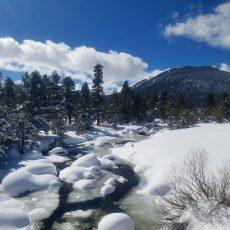 חופשת סקי ללא סקי: טיולים מומלצים בשלג