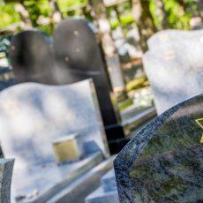 פרשת ויחי: מה יהיה אחרי מותנו?