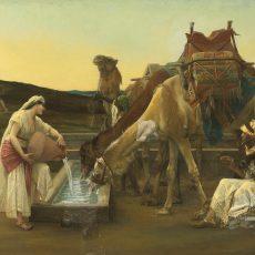 פרשת חיי שרה: בדרך לחתונה עוצרים בכנען