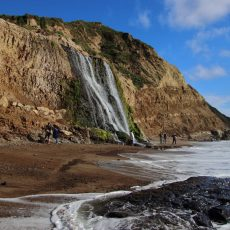 Point Reyes National Seashore: טיול יומי בשמורת פוינט רייס