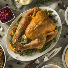 חג ההודיה: הסיפור מאחורי החג ורעיונות לפעילות משפחתית סביבו