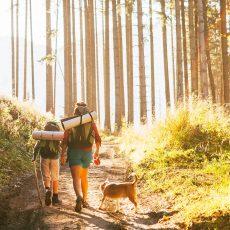 טרק ראשון עם הילדים בטבע? קבלו 10 טיפים לצלוח אותו בשלום